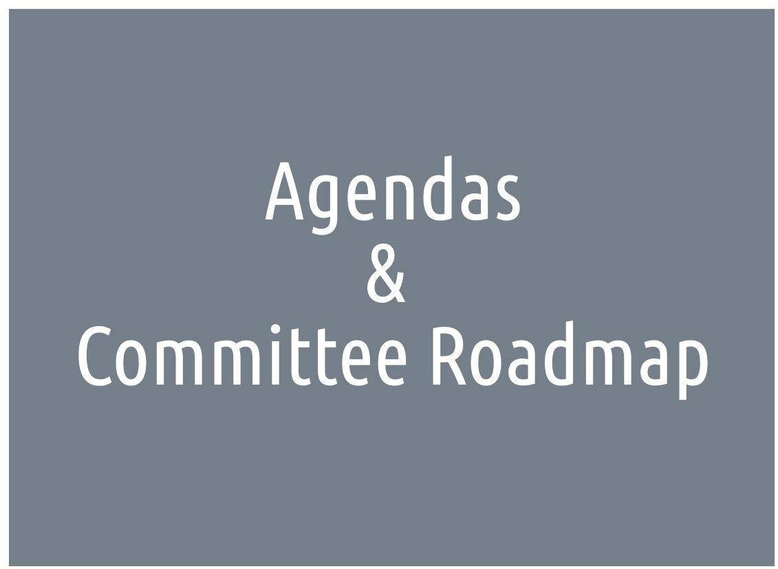 agendas and roadmap icon