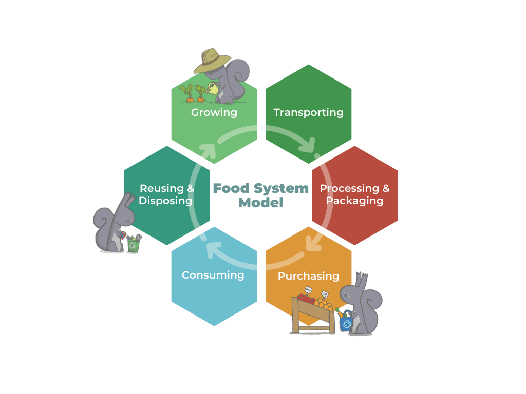 Food systems diagram