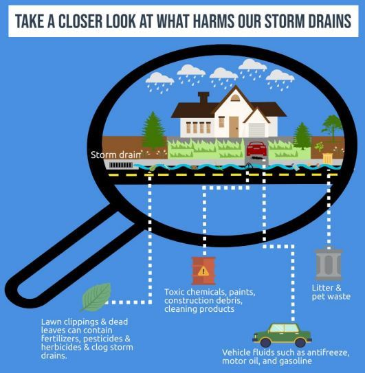 Take a Closer Look at What Harms Our Storm drains